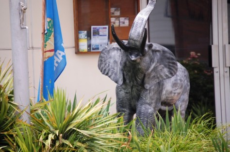 Elephant Statue in front of the Hugo Chamber of Commerce
