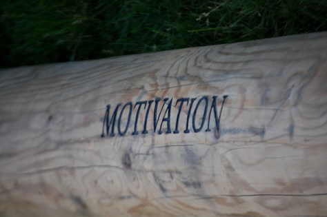 The Motivation Log