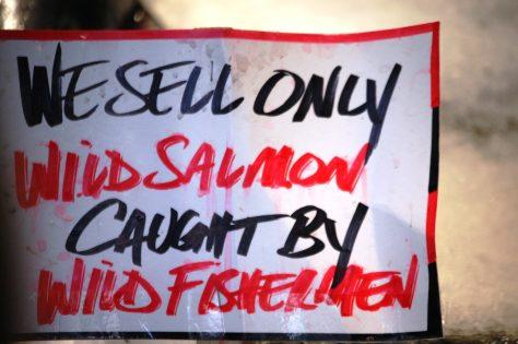 Wild Fish caught by Wild Fishermen