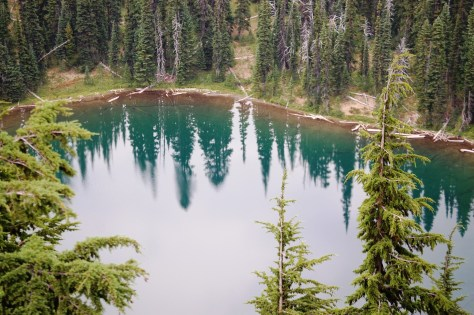 AA view of Tipsoo Lake as seen from the trail