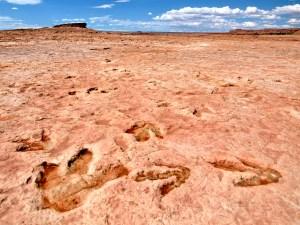 Moenave Dinosaur Tracks near Tuba City, AZ