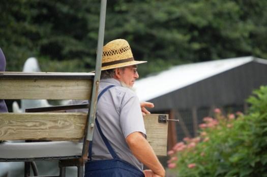 Amish Man - Charm, Ohio