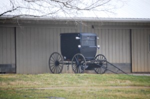 Lonely Amish Buggy