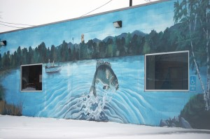 Wall Mural on laundromat in Avon, MN