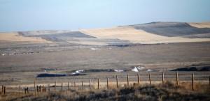 Striped field as seen north of Cohagen