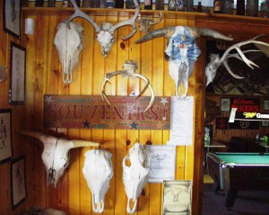 Many antler mounts - Stoneville Saloon