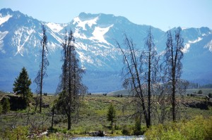 Scene along the Salmon River byway