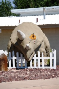 A de-horned Dino in Clayton, New Mexico