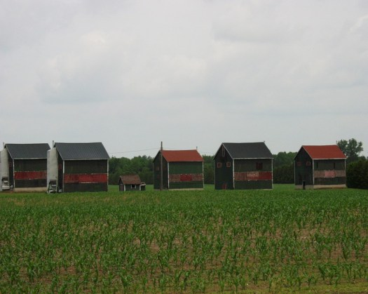 Tobacco Barns in SW Ontario Canada