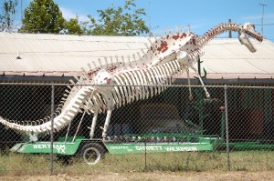 Big White Dino made of old car parts - Bertram, Texas