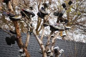 Shoe Tree in Talent, Oregon