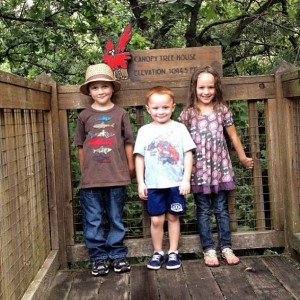 Kids at the summit of the Canopy Tree House