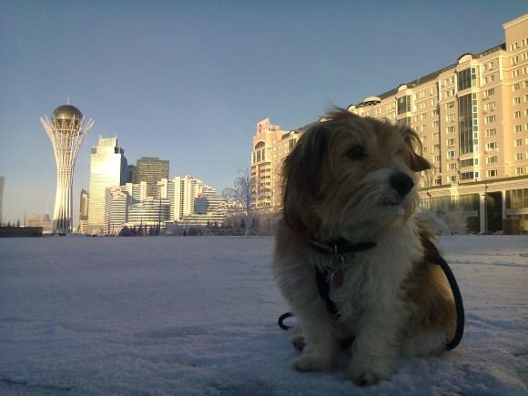 December Snow in Astana