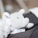 Doudou dans valise maternité