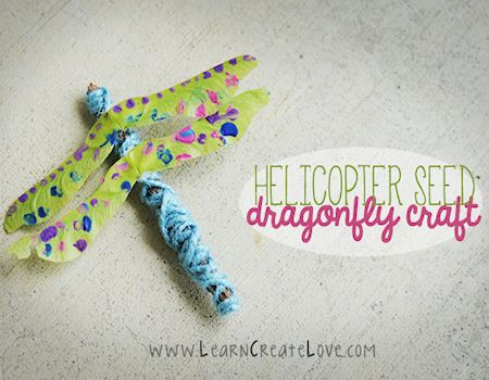 Helicopter Seed Dragonfly Craft