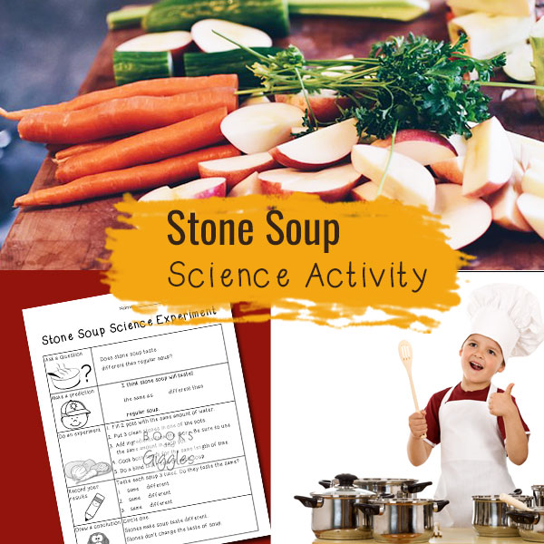 Stone Soup science investigation.