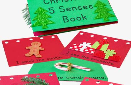 Learn about the Senses with a Fun Christmas Book