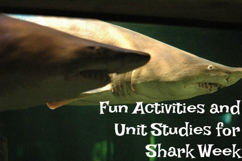 shark week activities and unit studies