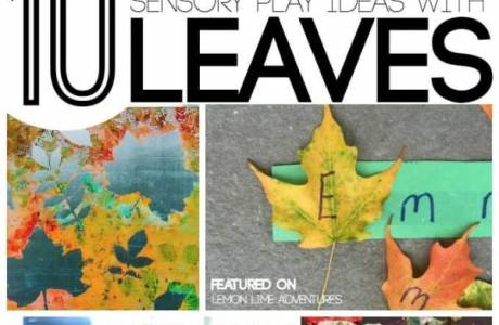 Fun Ways to Play with Fall Leaves