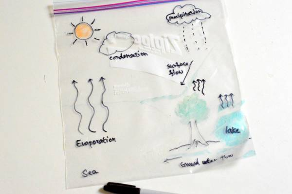 Learn all about the Water Cycle