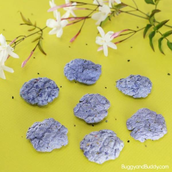 Make Seed Balls for Earth Day