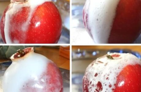 STEM Activities for 10 Apples Up on Top