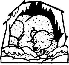 hibernation pattern sleeping bear
