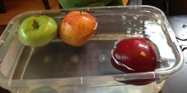 apples sink or float experiment