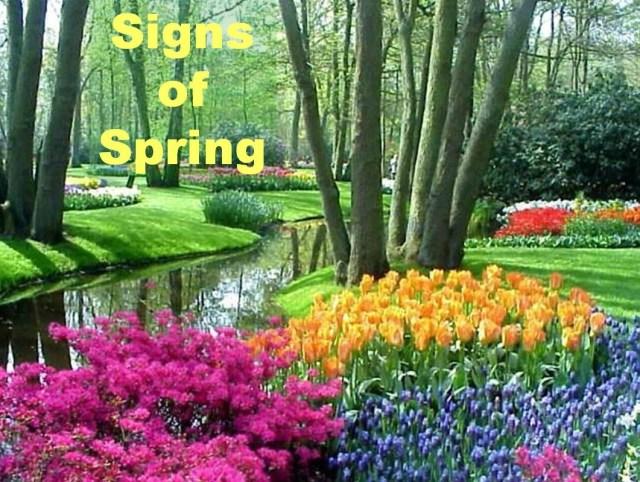 signs of spring season