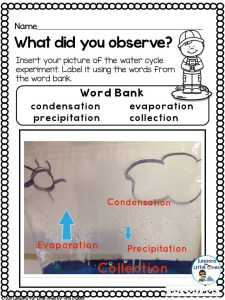 labeling the water cycle experiment