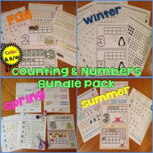 counting and numbers bundle pack