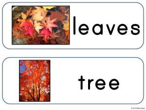 fall, autumn words