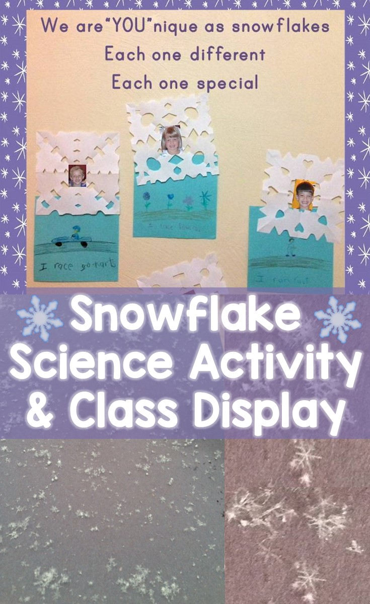 Snowflake Science Snowflake Classroom Display Lessons