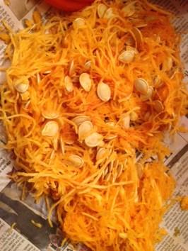 pumpkin seeds - pumpkin life cycle