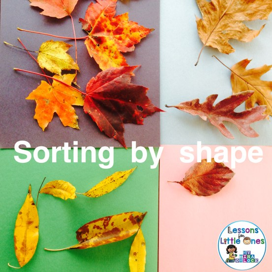 sorting fall leaves activity