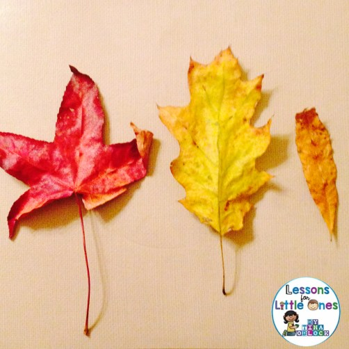 fall leaf learning activity