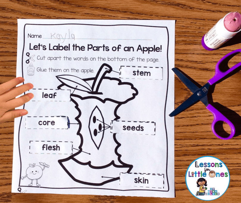 apple science experiments printable