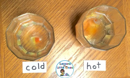 dissolving candy corn science experiment - hot or cold water