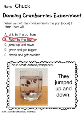 dancing cranberries experiment page