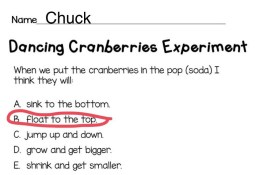 Dancing cranberries Christmas science experiment page