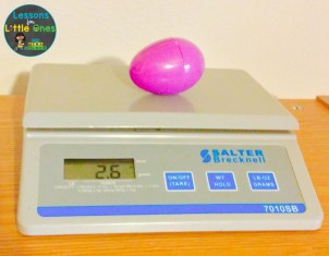egg weight experiment