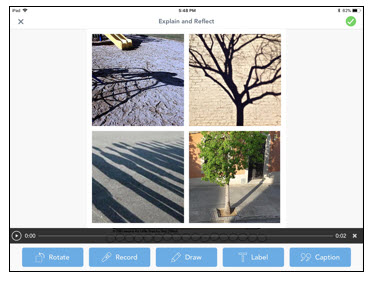 shadow hunt using Seesaw app