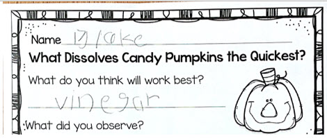 candy pumpkin experiment prediction