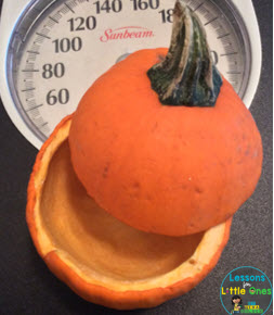 pumpkin weight