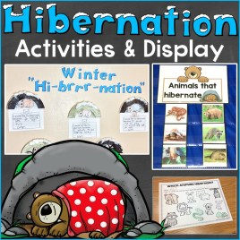 hibernation activities & display