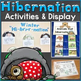 hibernation activities & display