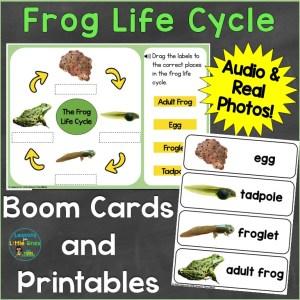 frog life cycle digital print