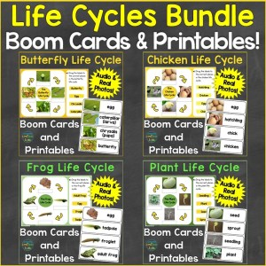 life cycles bundle butterfly chicken frog plant