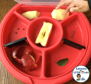 apple science experiments for kids