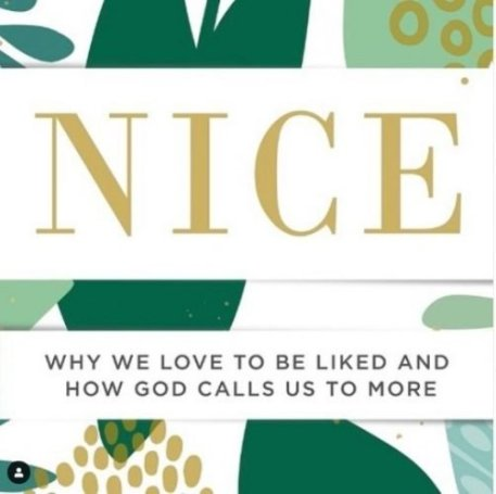 Nice by Sharon Hodde Miller